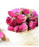 玫瑰花蕾20